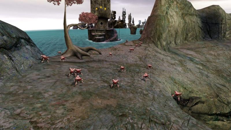 20 crabes photographiés sur Ahnonay Uruexp17
