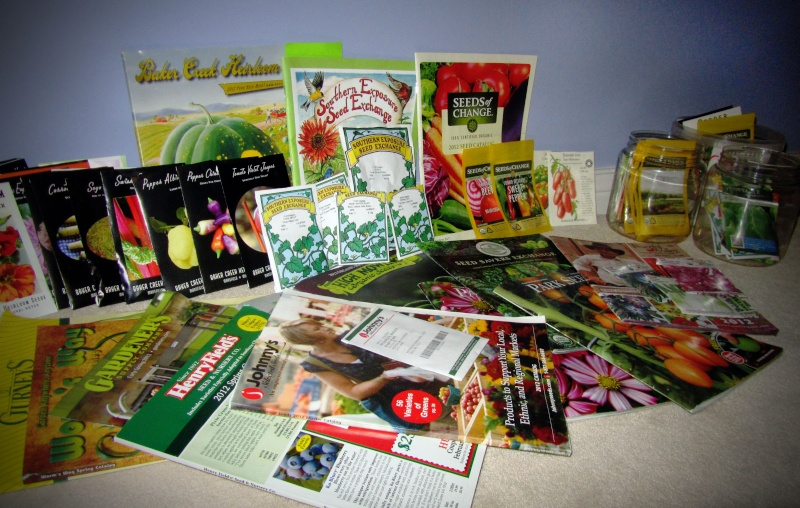 Photo of Seed Catalogs? Img_1110