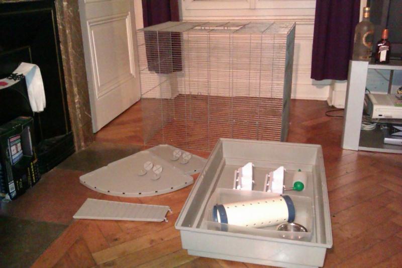 A vendre cage Jenny + Don habitrail mini Imag0010