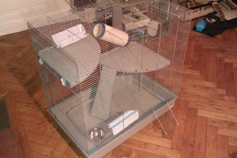 A vendre cage Jenny + Don habitrail mini Imag0011
