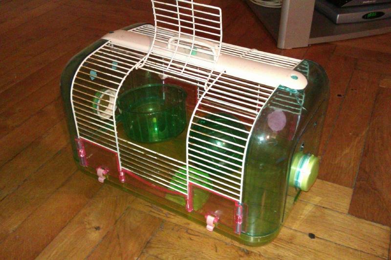 A vendre cage Jenny + Don habitrail mini Imag0111