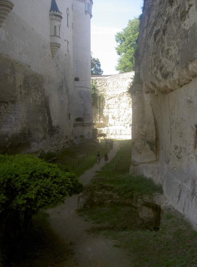 Le château de Brézé - Page 2 314