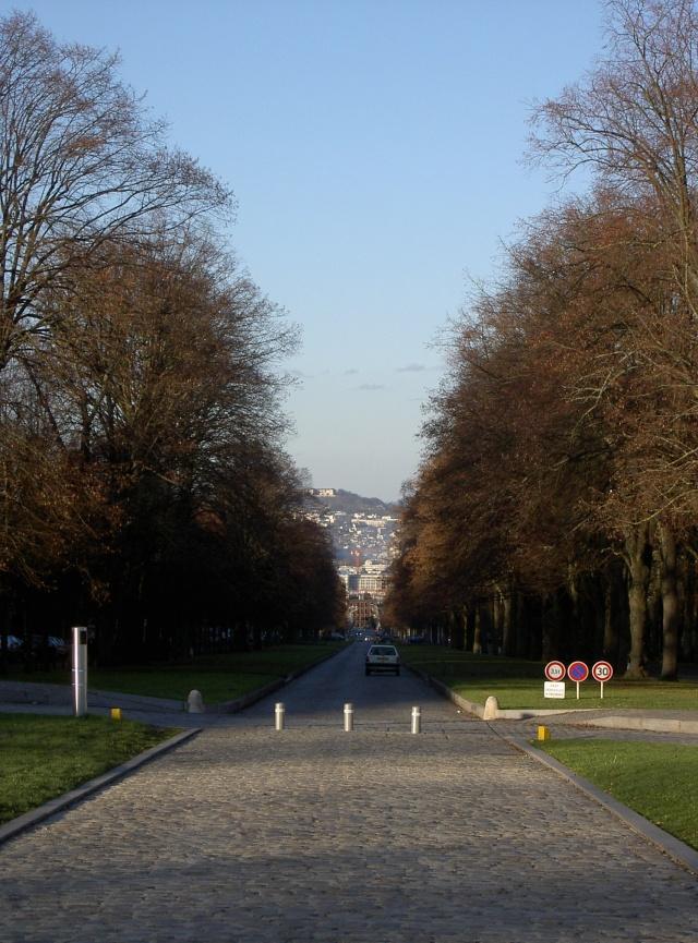 Le château de Meudon Pict6816