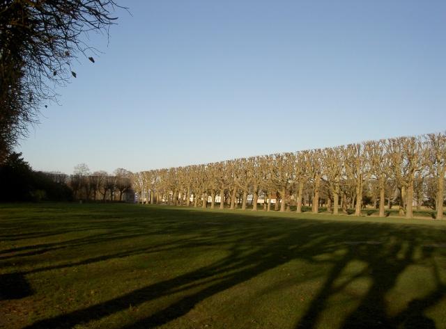 Le château de Meudon Pict6818