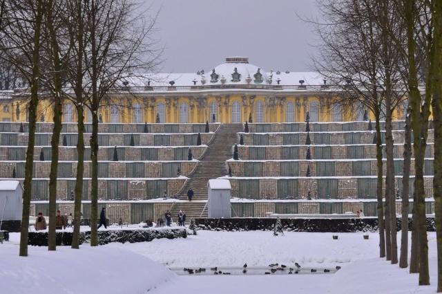 Potsdam Sans-t14