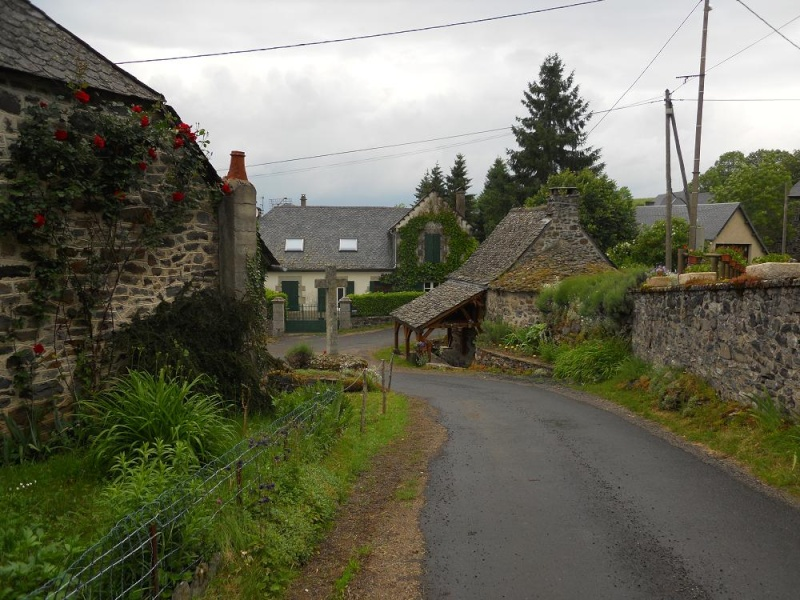 La vallée de la Sumène 111