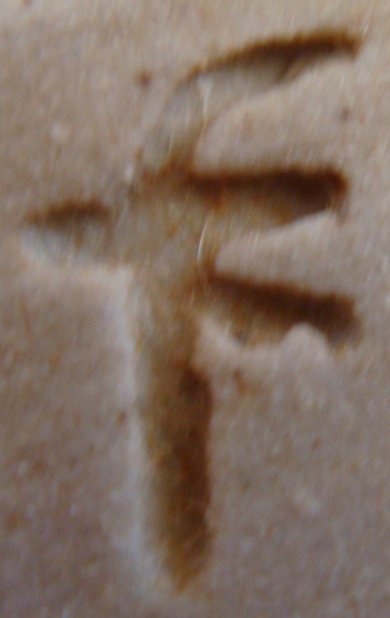 Please help with these marks Dsc05610