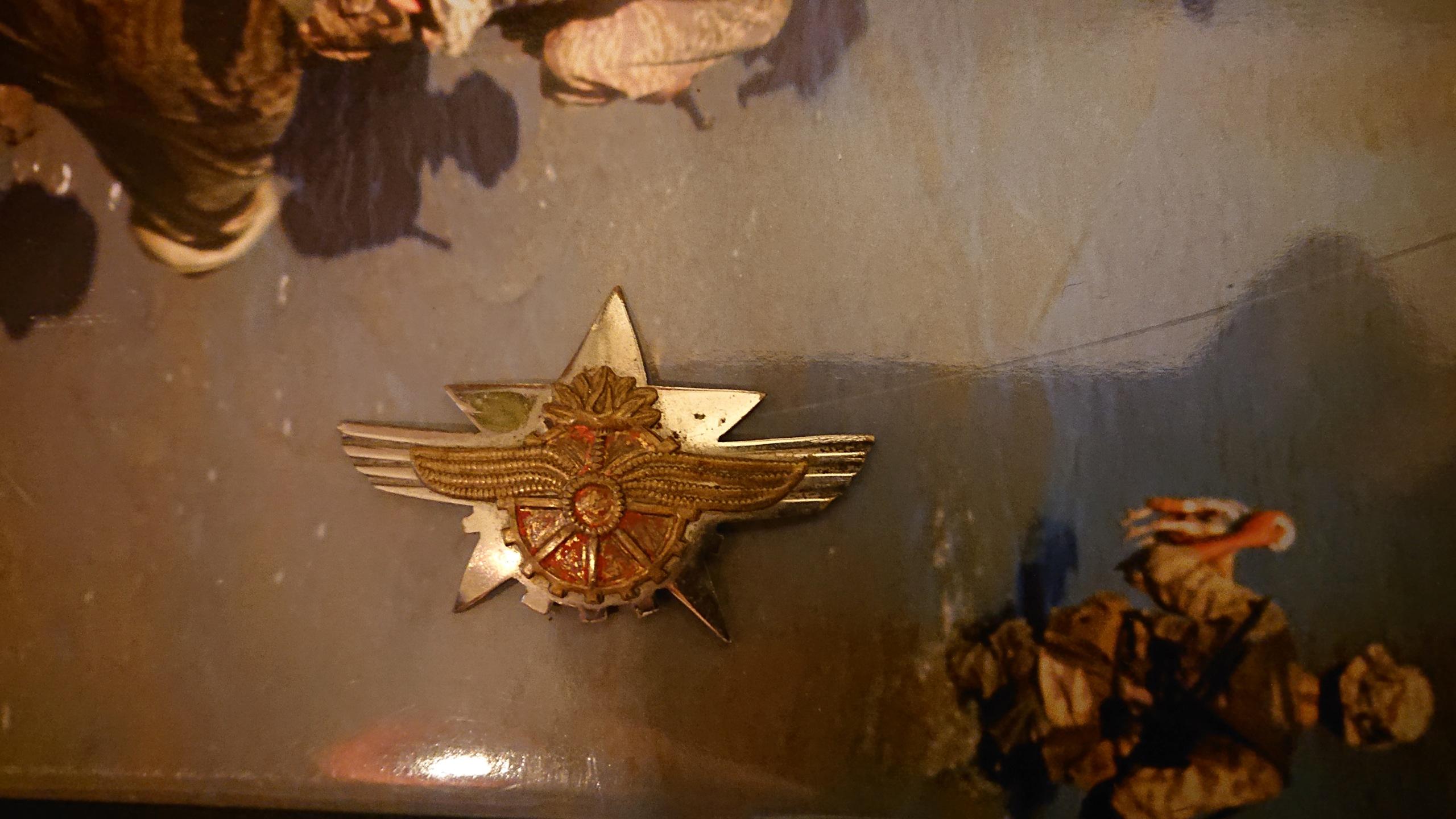 Insigne aviation soviétique Dsc_1227