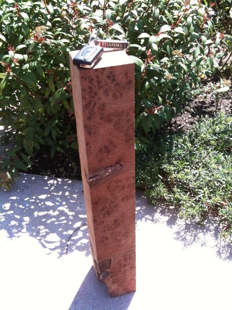Conception et fabrication d'un boitier en loupe d'orme Img_0452