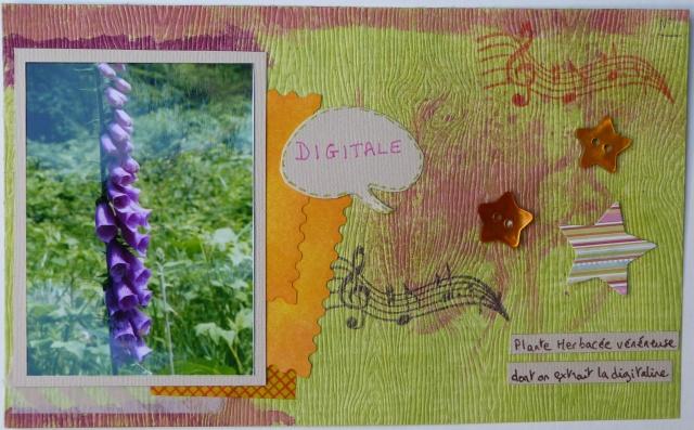 Galerie de Flogribouille {MAJ 25/08/2012} - Page 2 P1030519
