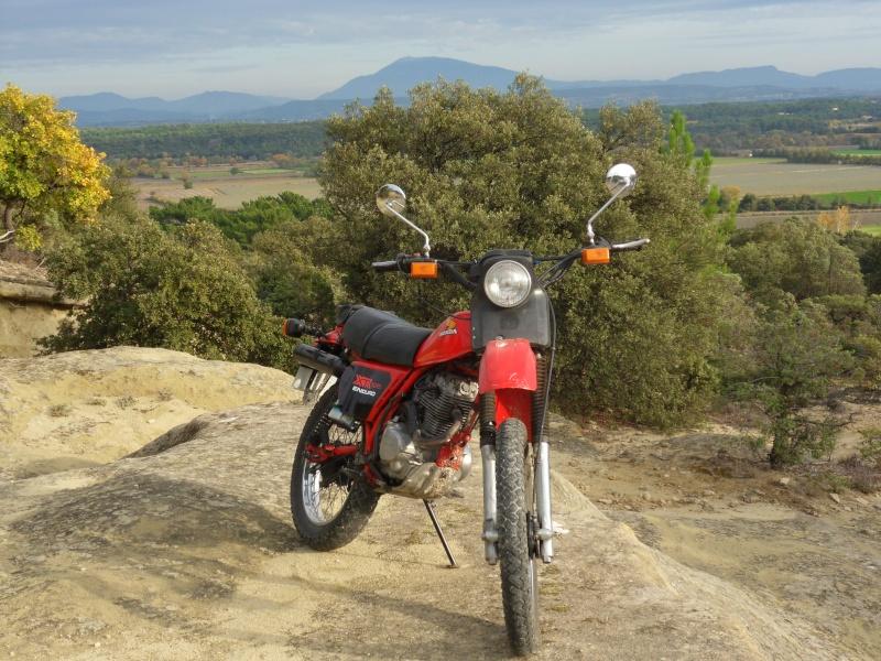 """concours photo oct 2011"""", Votre Honda en automne."""" Sdc11210"""