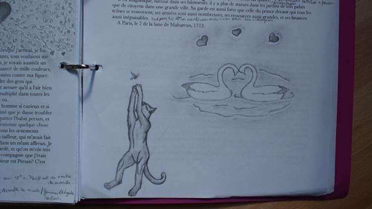 Mes dessins et autres ( Cestmoi ) Chatcy10
