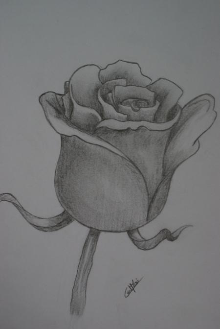 Mes dessins et autres ( Cestmoi ) Dsc00616