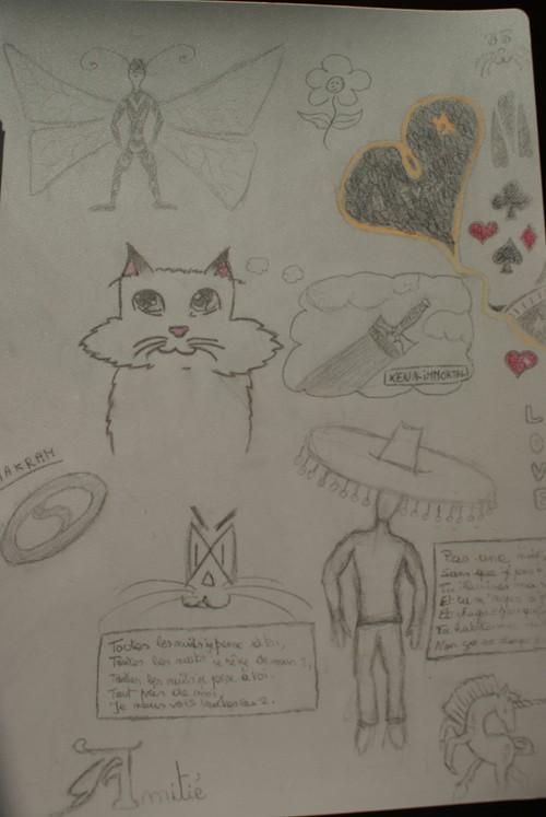 Mes dessins et autres ( Cestmoi ) Farde_12