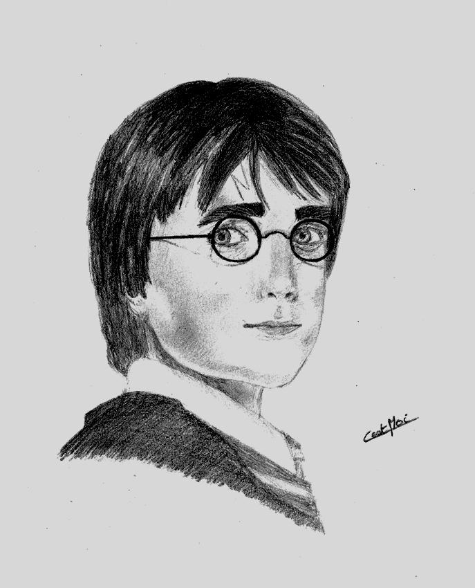 Mes dessins et autres ( Cestmoi ) Harry_10
