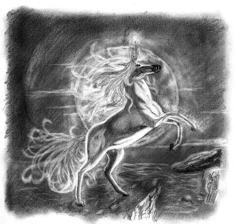 Mes dessins et autres ( Cestmoi ) Licorn10
