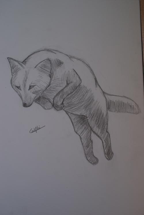Mes dessins et autres ( Cestmoi ) Renard11