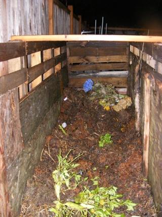 Monthly Avatar Theme For November: Compost! Dscf0182