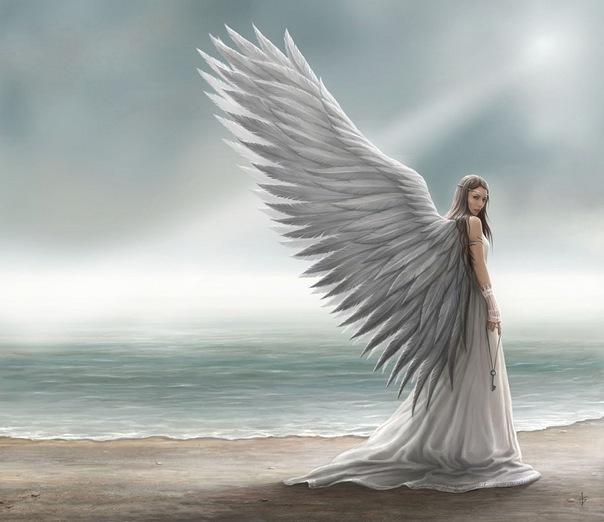 Мир ангелов X_f48010