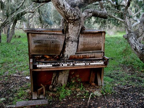 Megalodon....Essai pour une cartouche Piano_10