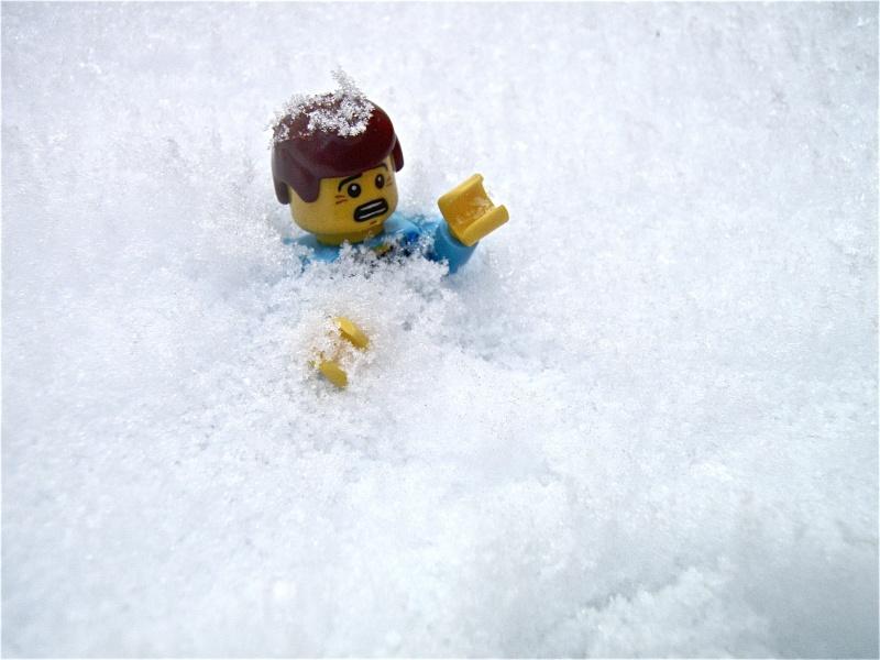 [L'hiver de la minifig] Les photos P2040014