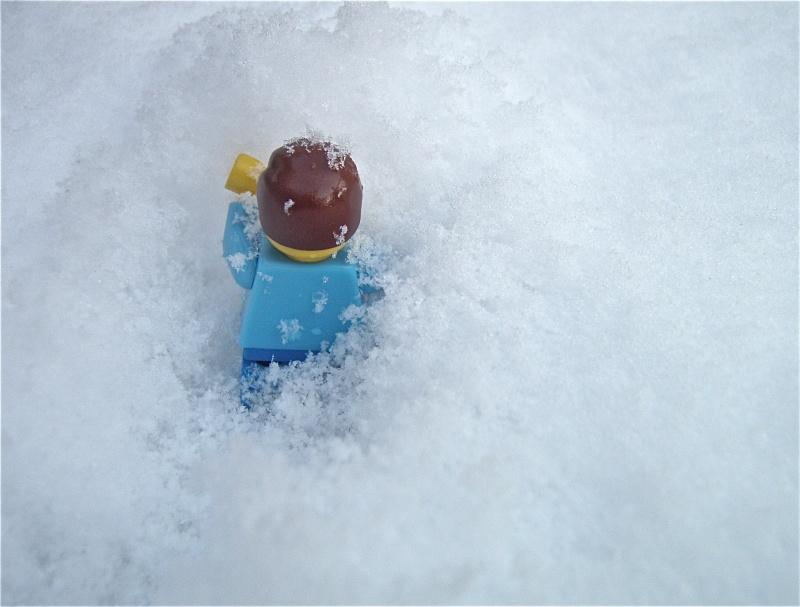 [L'hiver de la minifig] Les photos P2040015