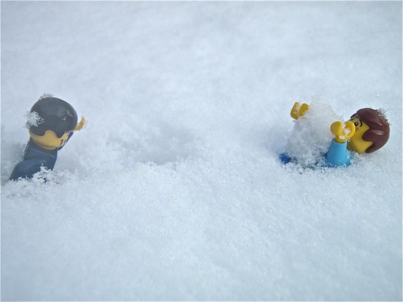 [L'hiver de la minifig] Les photos P2040016