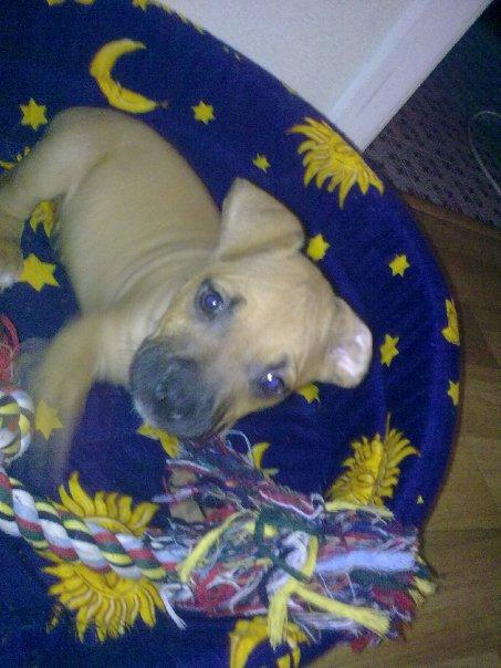 Zelex [De ses premiers mois à ses 3 ans] Ronfle10