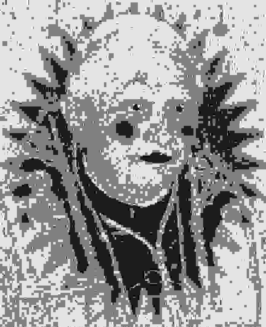 Pixel/Montages Kxfd1m10