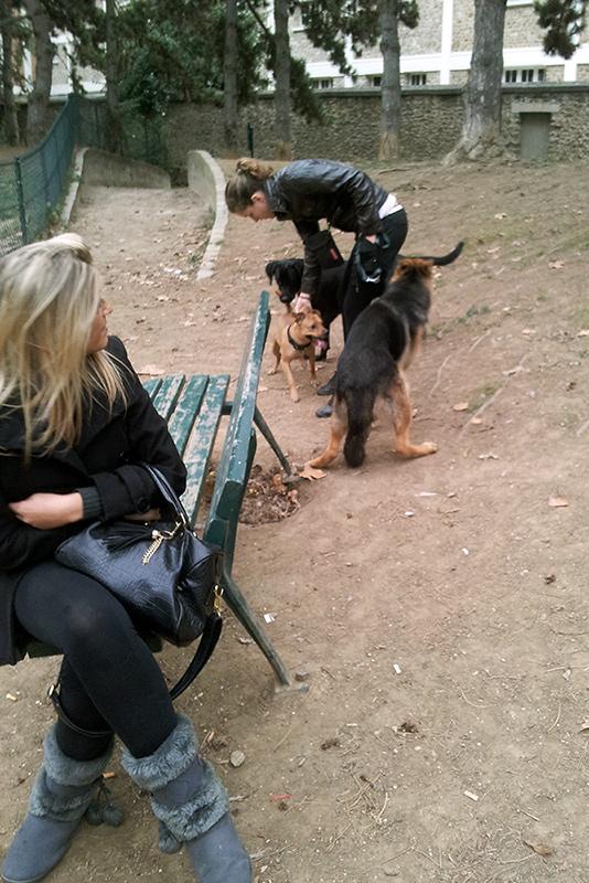 Mon chien à Paris Kass1011