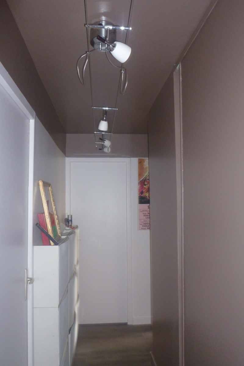 Besoin aide pour relooker pour salon/salle à mangé/couloir