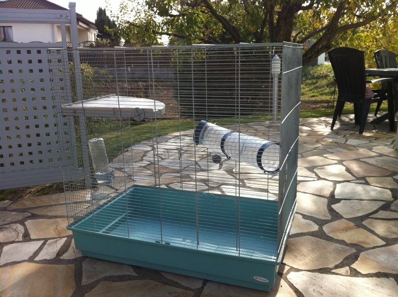 """Vente cages : """"Furet XL"""" & """"Jenny"""". - Page 2 Img_0710"""