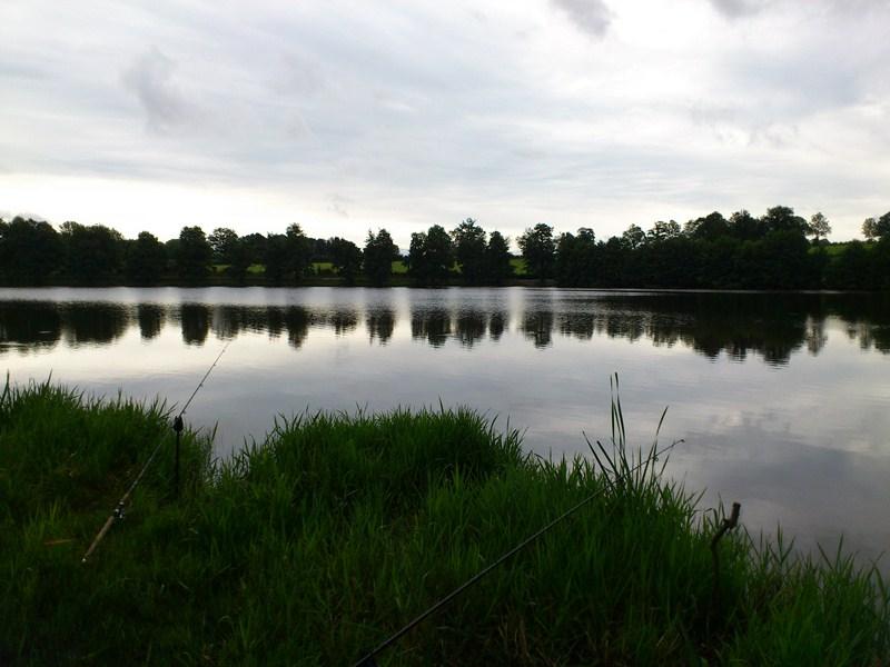 Creuse, le site des étangs de la Naute et Malleteix juillet 2012 Dsc_0216