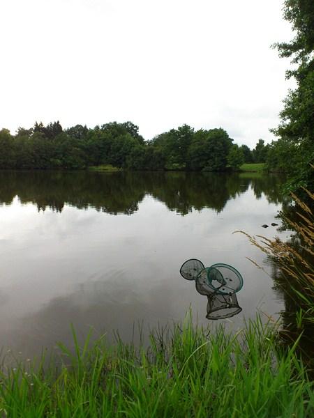 Creuse, le site des étangs de la Naute et Malleteix juillet 2012 Dsc_0217