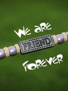 FRIENDSHIP :-) 28334310