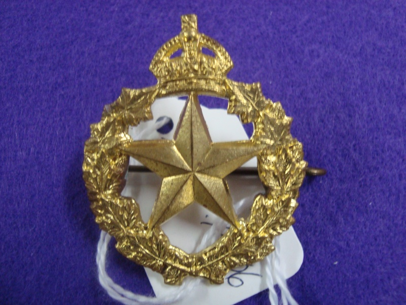 Identifying Cap Badges Dsc02714