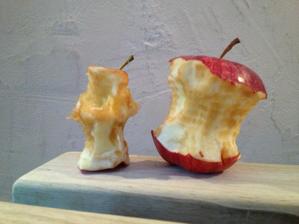 Savez-vous pourquoi il ne faut pas jeter son trognon de pomme ou sa peau de banane dans la nature ? Cover-10