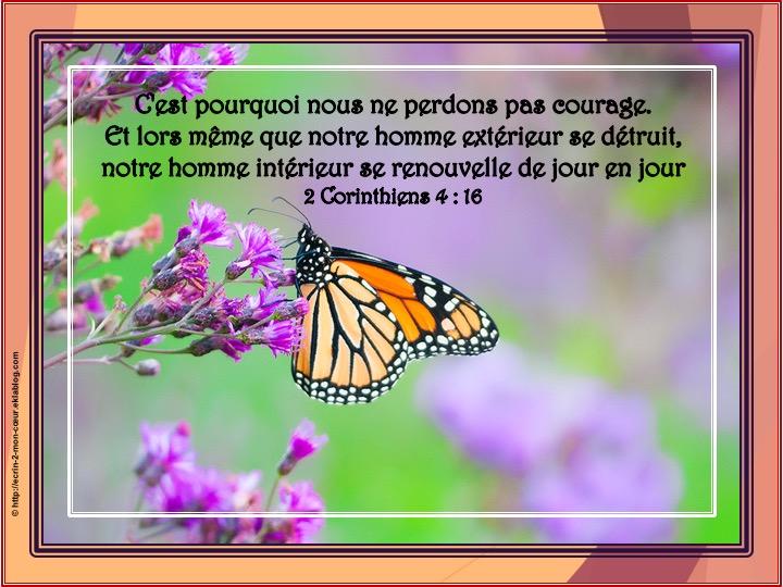 Vieillir : Courage ! Si notre être extérieur se détruit, notre être intérieur se renouvelle de jour en jour ! Uxj8ts10