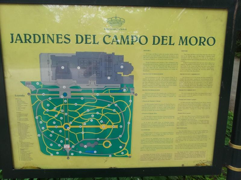 Jardines del Campo del Moro  20120510