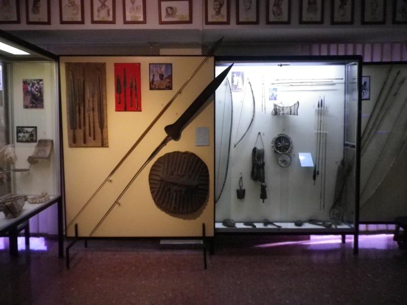 Museo Africano Mundo Negro  Museo_13