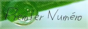 Le journal du Clan fait par Muguet n°1 Numaro11