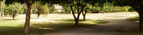 Parque Parque10