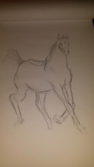 Apprendre à dessiner : conseils. 20181211