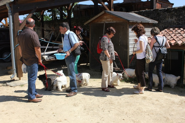 Réunion pentecôte 2012: LES PHOTOS!!! - Page 5 Img_4119