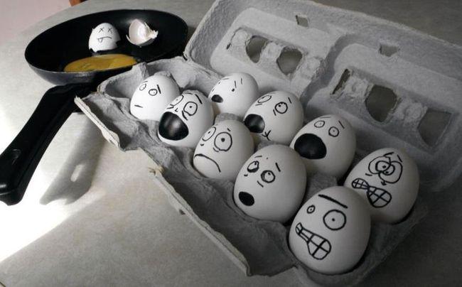 Humour en image ... - Page 6 Eggs10