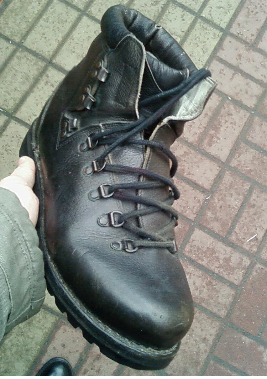 German Mountain Boots? Sp_a2712