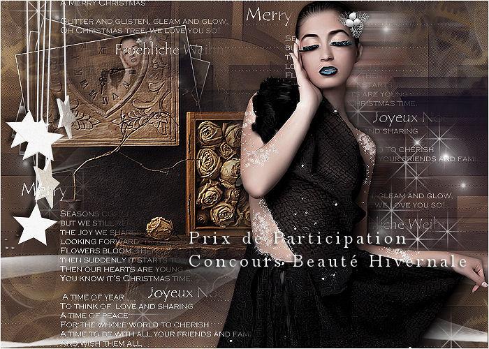 Remise des Prix Concours beauté hivernale  Prix_d11