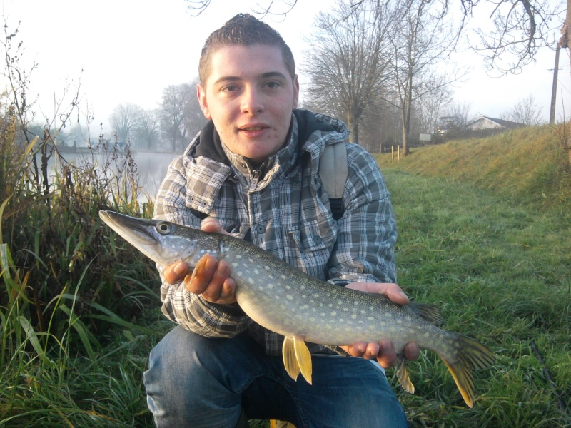 album pike57150 Photo015