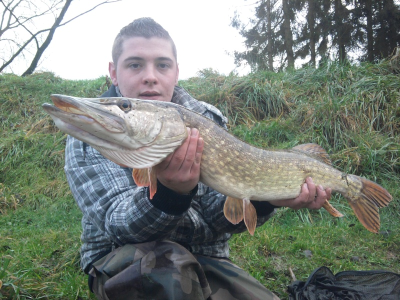 album pike57150 Photo016