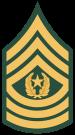 Sargento Mayor Del Comando